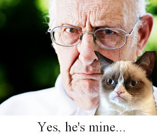 Funny Grumpy Cat Owner Picture