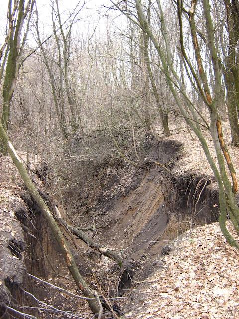 A gully in Kharkov oblast, Ukraine.