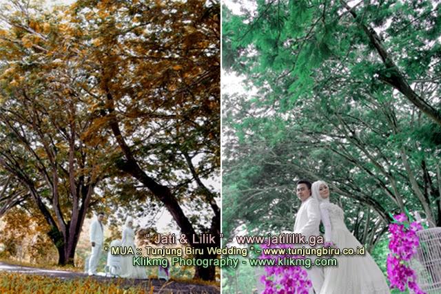 Digital Online Photo Album (01) : Jati & Lilik - Foto oleh : Klikmg 2 | Make Up & Busana oleh : Tunjung Biru Rias Pengantin Purwokerto
