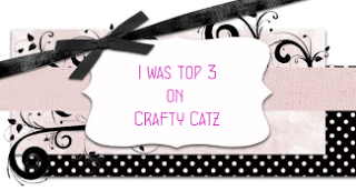 Craft Catz Top Three