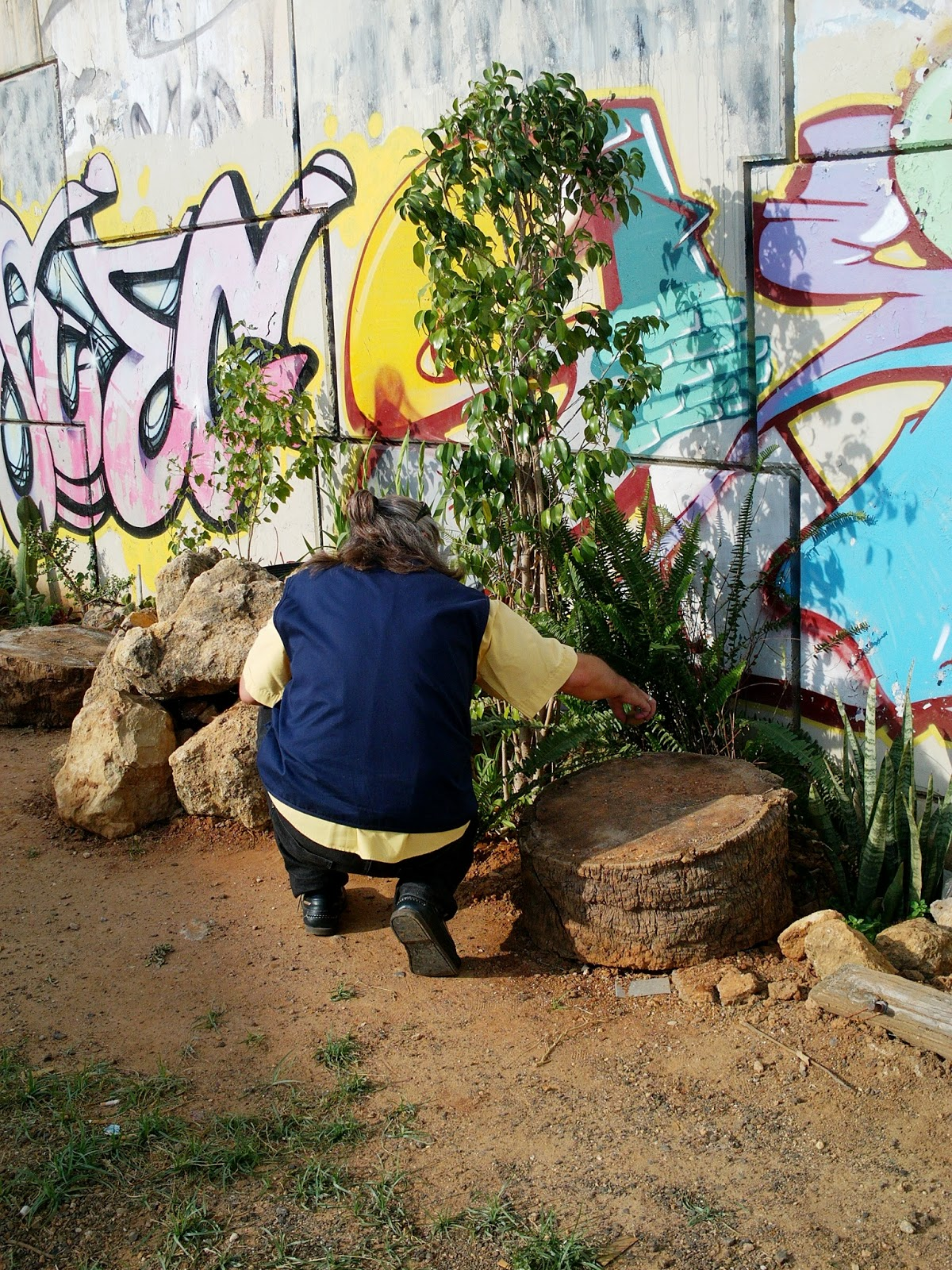 La cultura del jardin un jardin de postal - Un jardin para mi ...