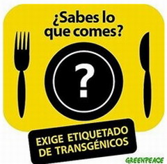 ALIMENTOS TRANSGNICOS