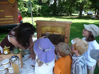 Children looking at observation hive