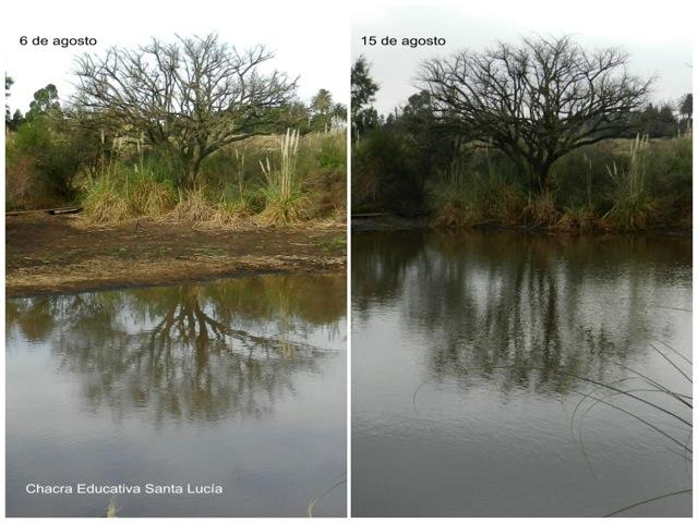 Así subió el nivel del agua del tajamar chico en 9 días  - Chacra Educativa Santa Lucía