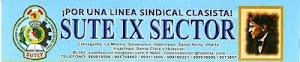 IX SECTOR (JUNTA DIRECTIVA PRO CONARE)