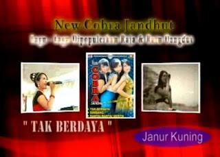 OM New Cobra Album Tak Berdaya Terbaru 2012