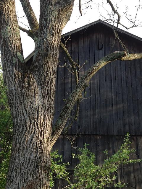 Side of Barn Details