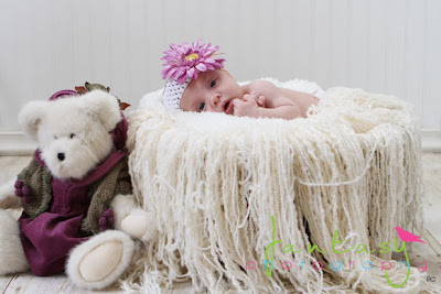 Winston Salem Triad Newborn Photographer Fantasy Photography