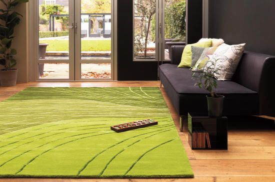 alfombras en la sala
