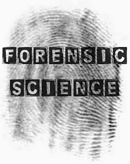 what does a forensic scientist do