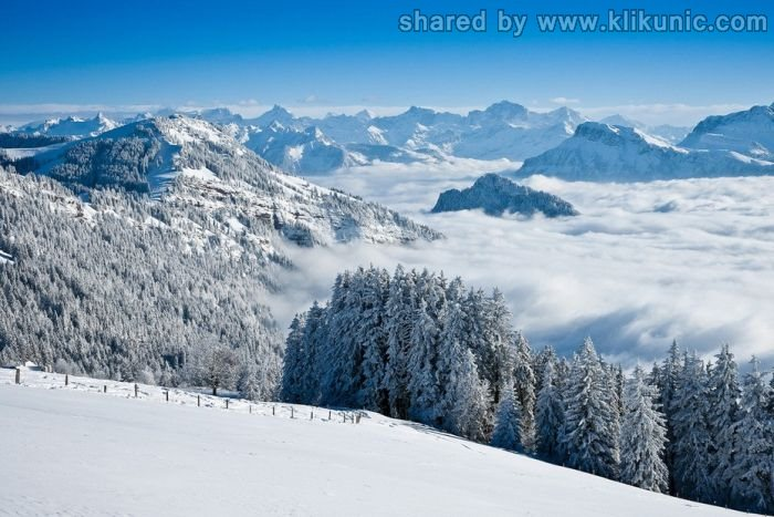 http://2.bp.blogspot.com/-ZXO7w0myfHA/TXLdznYrESI/AAAAAAAAP58/J2Cf9hvTYO0/s1600/winter_03.jpg