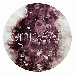Mickey Vin