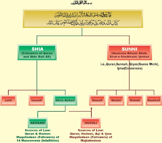 shia-sects-tree.jpg