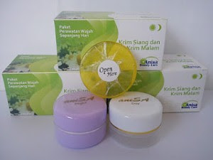 Manfaat Cream Anisa Skin Care