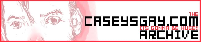 caseysgay.com