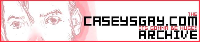 caseysgay.com