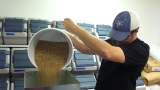 Jimmy pouring grain