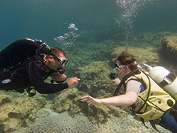 TRY scuba diving in cyprus