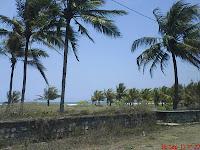 Pantai Banyak Pohon Kelapa