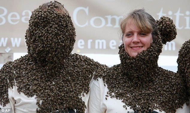 tips mengobati sengatan lebah