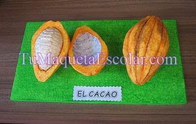 Maqueta de la fruta del cacao partida en dos partes