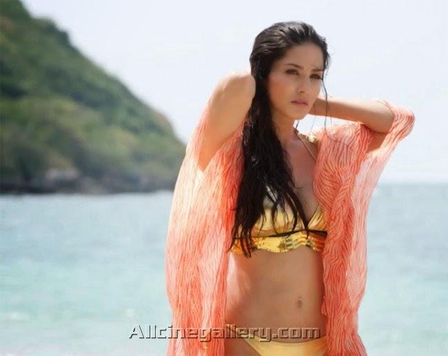 south celebrities sunny leone new hot golden bikini stills