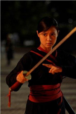 Thiên Mệnh Anh Hùng (2012) - Bức Huyết Thư (2012)