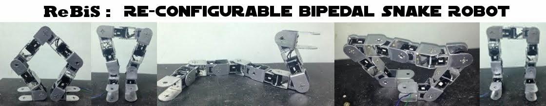 ReBiS - Reconfigurable Bipedal Snake Robot