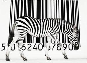 Cebras rayas
