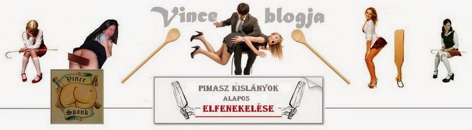 Vince blogja