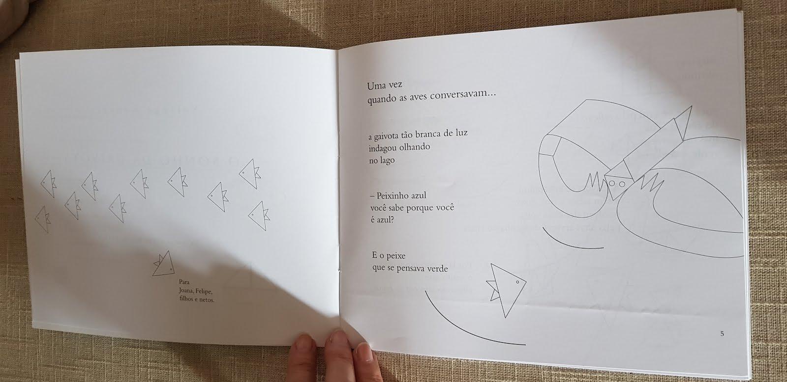 Livro infantil: O sonho da gaivota