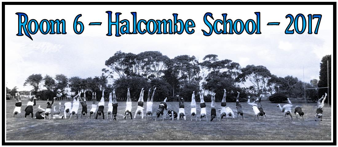 Room 6 - Halcombe School - 2017