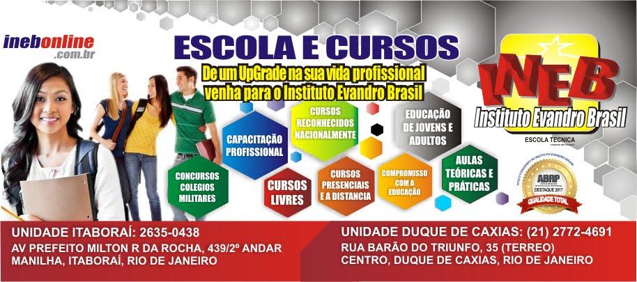INSTITUTO EVANDRO BRASIL