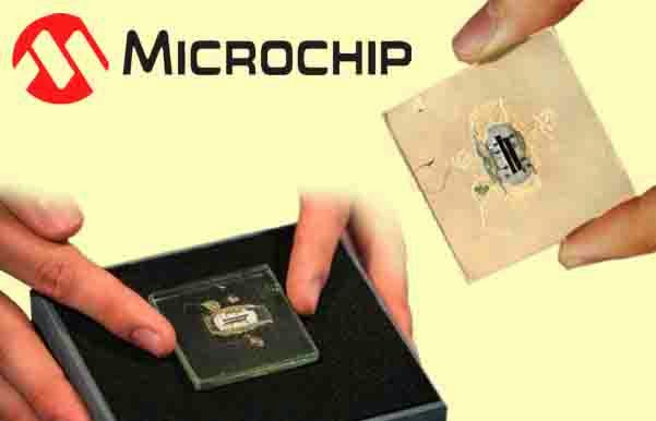 Prototype, world first, microchip,