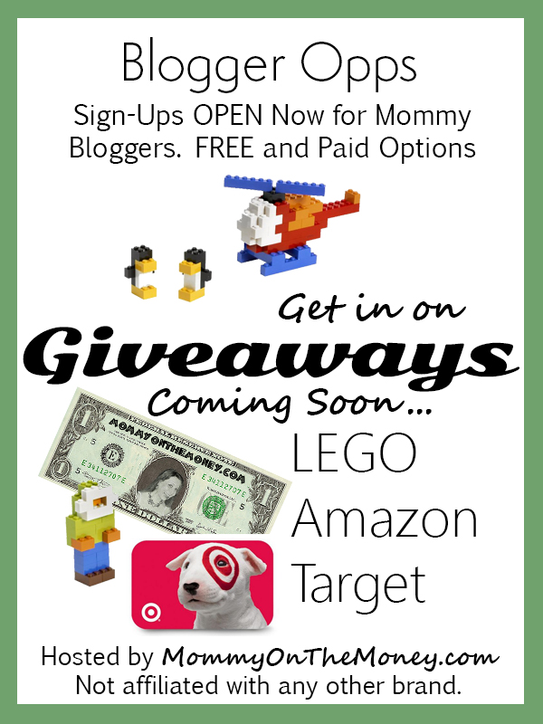 BLOGGER OPPS giveaways and monetize