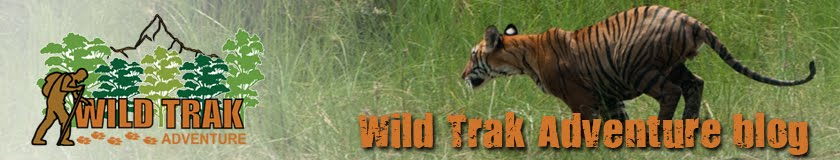 Wild Trak Adventure