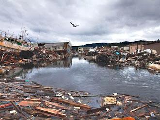 Fantasmas tras terremoto y tsunami de Japón