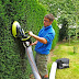 Cleaner Homes and Gardens, Kitchen, Homes, Garden and Lawn Care