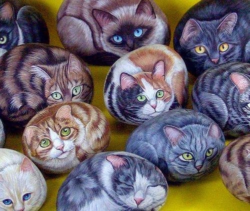 malowane koty