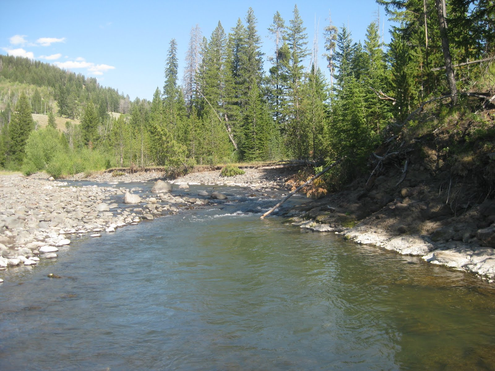 Southwest angler cache creek hellroaring creek ynp for Roaring river fishing hours