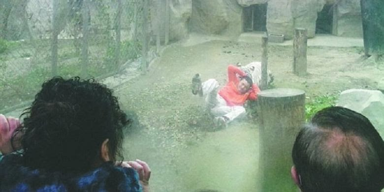 http://dangstars.blogspot.com/2014/02/pria-china-jadikan-dirinya-sebagai-makanan-harimau.html