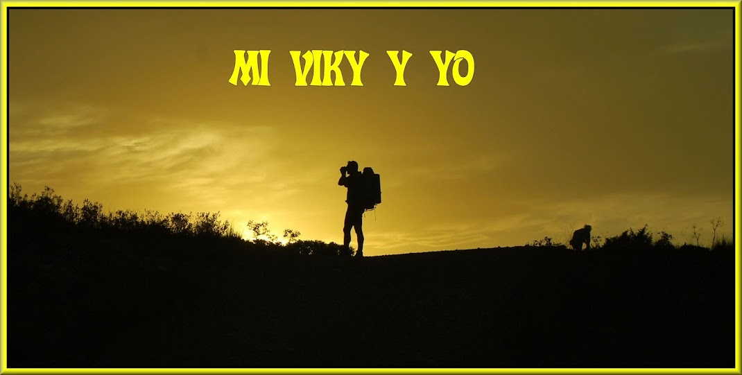 Mi Viky y Yo