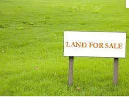 What should you think about while buying a land/plot