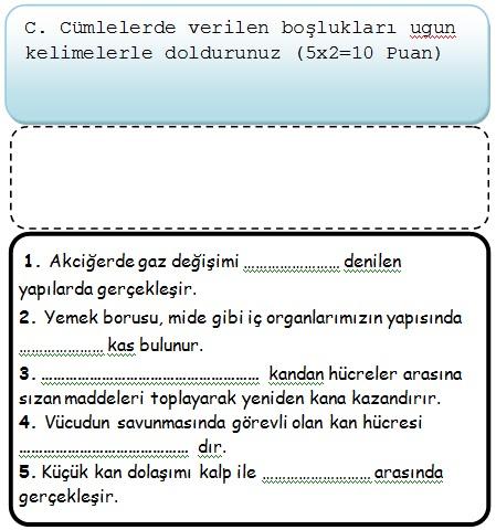 Sınıf fen ve teknoloji 2 dönem 1 yazılı soruları 2013