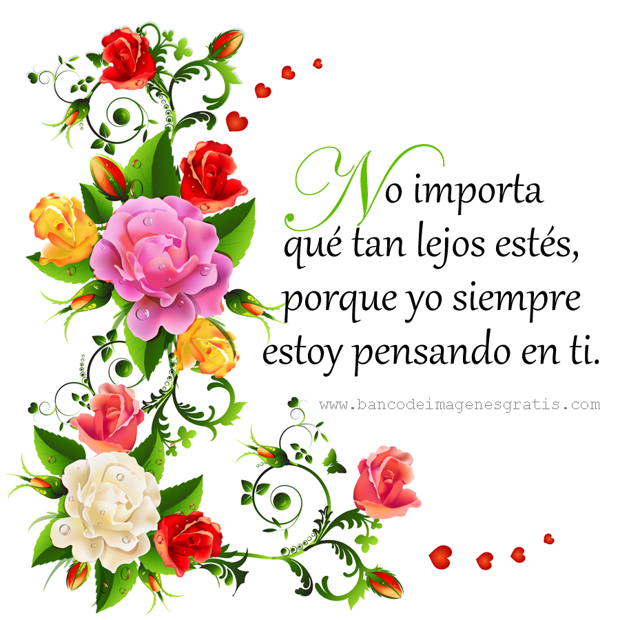 Descargar Fotos De Flores De Amor Gratis - Imagenes de amor GRATIS Facebook