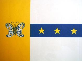 Bandeira do Município de Tanabi