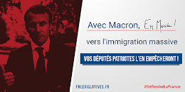 Contre l'immigration massive