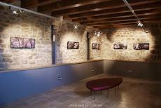 "Exposició ""ORIGEN"" d'Anna Bahí al Castell de Palol de Revardit (pla de l'Estany) 2015"