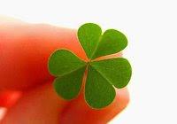 Como tener suerte 4 consejos para atraer la buena suerte - Como tener suerte en la vida ...