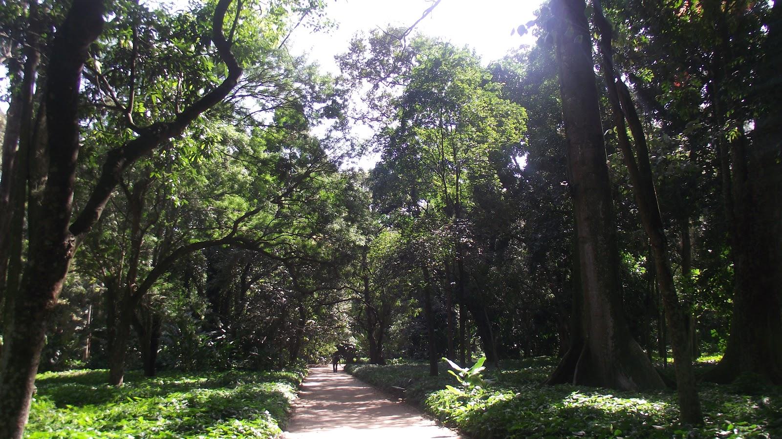 imagens jardins maravilhosos : Datoonz.com = Imagens Jardins Maravilhosos ~ V?rias id?ias ...